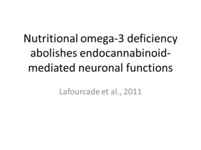Cannabinoid Receptor Function is Altered by Nutrionally Deficient Diet | Cannabinoid Issues | Scoop.it