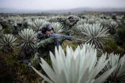 La Jornada: Colombia asesinó a líderes de las FARC con ayuda clandestina de la CIA | Activismo en la RED | Scoop.it