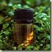 Nomenclature du nom d'une huile essentielle | Huiles essentielles HE | Scoop.it