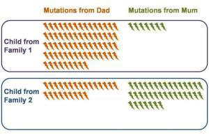 We are all mutants: First direct whole-genome measure of human mutation predicts 60 new mutations in each of us | UtopianDynamics | Scoop.it
