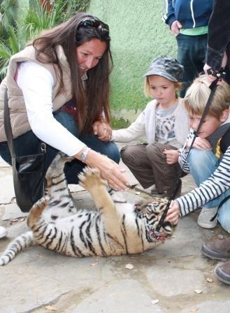Fun Activities with Children | Family Life In Spain | Scoop.it
