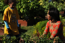 First Lady's White House Kitchen Garden An Inspiration For Healthy Eating - CBS Local | In the garden | Scoop.it