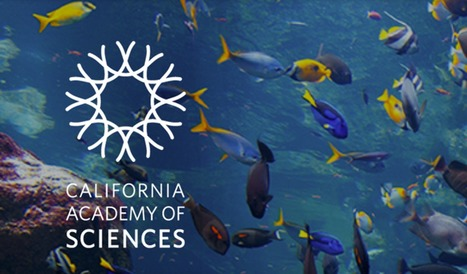 """California Academy of  Sciences/ Khan Academy """"Biodiversity"""" course 