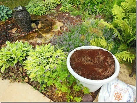 The Casual Gardener: Secret Recipe For Drought Tolerant Container Garden Soil Mix | Annie Haven | Haven Brand | Scoop.it