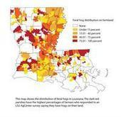 Feral hog damage to Louisiana farms now estimated at $74 million | Wild Pigs (Feral Hogs) | Scoop.it