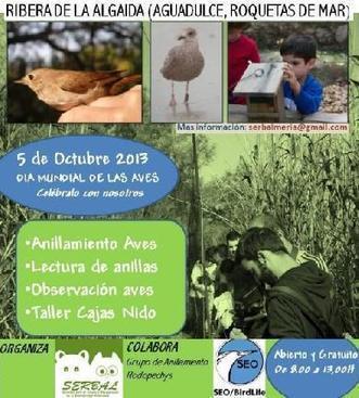 Día Mundial de las Aves - La Voz de Almería | Casa NIDO - HOUSE NEST | Scoop.it