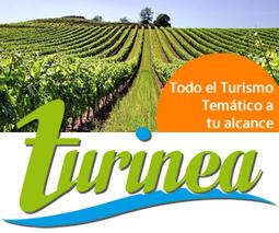 Nace 'Malagasecome', el nuevo medio de información especializado en gastronomía, turismo y eventos | Turismo | Scoop.it