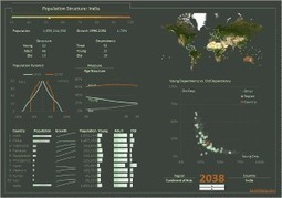 Infographics vs. Data Visualization The Excel Charts Blog | data visualization | Scoop.it