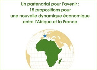 Rapport « Afrique France : un partenariat pour l'avenir » remis par Hubert Védrine | Développement International | Scoop.it