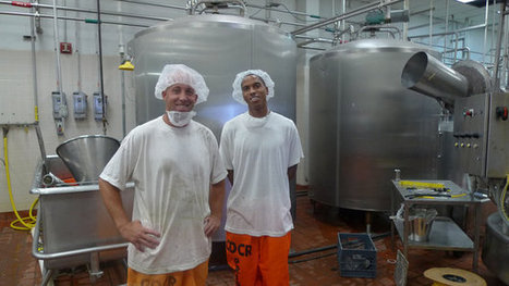 Prison Dairy Gives Inmates Job Skills — And A Sense Of Purpose - NPR (blog) | Prisoner learning | Scoop.it