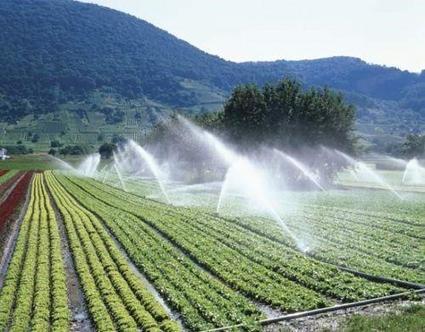 Rwanda : la JICA alloue 13 millions $ pour la construction d'un périmètre d'irrigation solaire | Agroalimentaire des Pays du Sud | Scoop.it