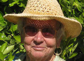 Beeman: Gardening creativity can top tough soil | InMaricopa | CALS in the News | Scoop.it