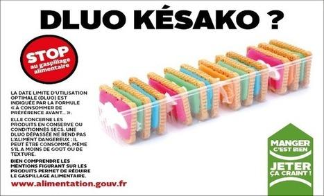 Lancement de RÉGAL : le Réseau pour Éviter le Gaspillage Alimentaire | Agriculture en Dordogne | Scoop.it
