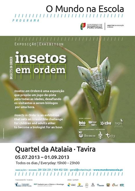 Bem vindo(a) _ Centro Ciência Viva de Tavira   Conheça no Verão   Scoop.it