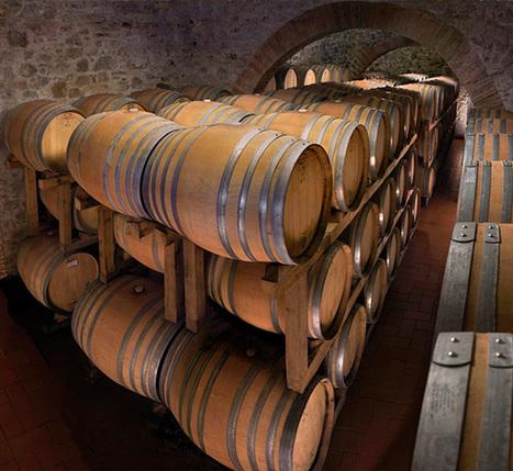 Le Giornate dell'Olio e del Vino | Wiilo | Wiilo a new city experience | Scoop.it