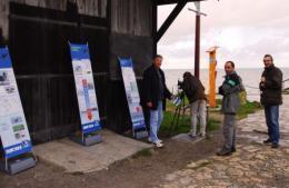 À la découverte des bernaches à Gujan-Mestras   Le Bassin d'Arcachon   Scoop.it