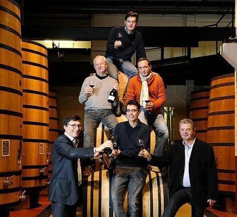 La Revue du vin de F on Twitter | Cep de vigne | Scoop.it