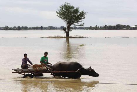 Philippines : alerte fortes précipitations et risques de coulées de boue - après Melor, la tempête tropicale Onyok | Risques et Catastrophes naturelles dans le monde | Scoop.it