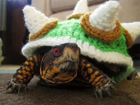 Bowser Crochet Sweater Turns Your Turtle Into Super Mario s True | All Geeks | Scoop.it