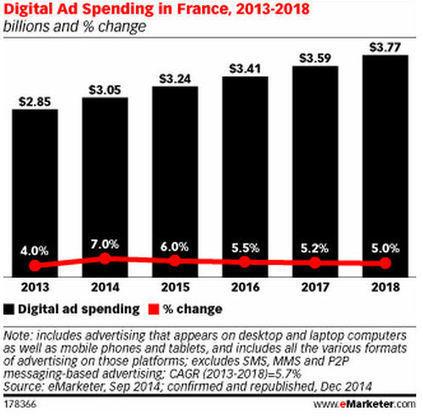 Les dépenses pub online dépasseront les 3 milliards de dollars en 2014 en France | Marketing TPE | Scoop.it