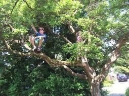 Lekker naar buiten: spelen in de natuur | Natuurkind, jongeren en de natuur. | Kinderen en de natuur | Scoop.it