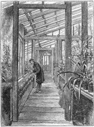 Charles Darwin and On the Origin of Species - Science NetLinks | ScienceStuff | Scoop.it