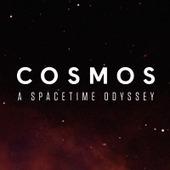 COSMOS: A Spacetime Odyssey - FOX.com | MS SQL & BI | Scoop.it
