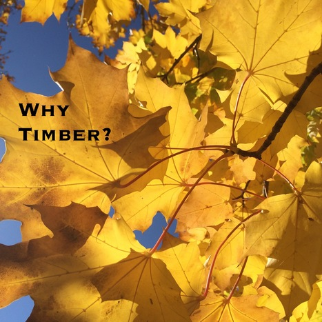 Why Timber? | Risk-Adjusted Returns | Scoop.it