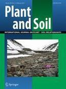 Biofortification of wheat, rice and common bean by applying foliar zinc fertilizer along with pesticides in seven countries - Ram &al (2016) - Plant Soil | Food Policy | Scoop.it