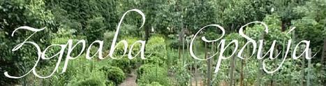 Повртарство - Здрава Србија | Гајење биља на природан начин | Scoop.it