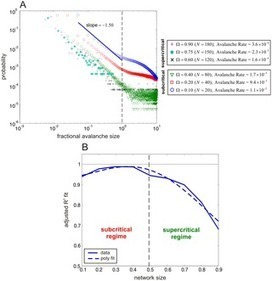 Intrinsic Noise Induces Critical Behavior in Leaky Markovian Networks Leading to Avalanching | Social Foraging | Scoop.it