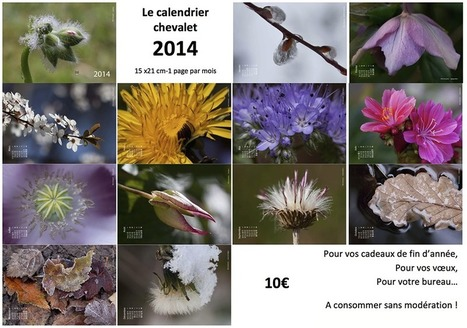 Calendrier 2014 | Ca m'interpelle... | Scoop.it