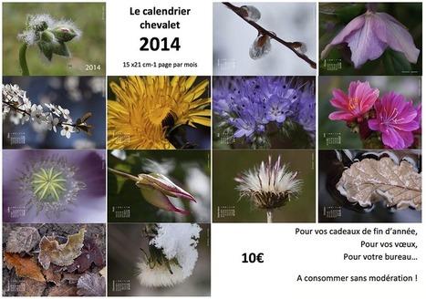 Calendrier 2014 - | Théo, Zoé, Léo et les autres... | Scoop.it