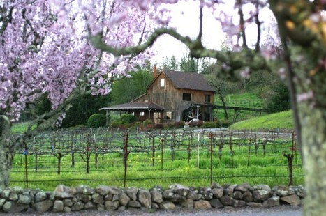 Fremont Winery Tour | Fremont Winery Tour Limos for Rent | Bay Area Limo Wine Tour Service | Scoop.it