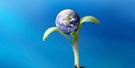 5 characteristics of Global Learning | Edumorfosis.it | Scoop.it