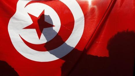 Tunisie: 5 ans après la révolte populaire, un bilan en demi-teinte | Maghreb-Machrek | Scoop.it