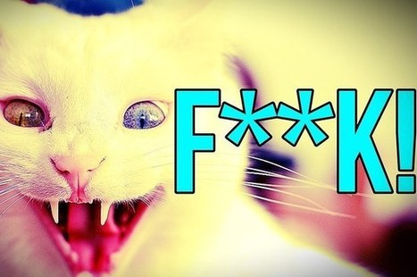 Here Are 14 Facts About The F Word That Will Impress Your Friends | Saved | Scoop.it