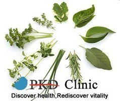 How Does Chinese Herbs Control Polycystic Kidney Disease - PKD Treatment | PKD | Scoop.it