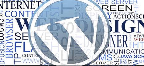 Calgary Wordpress Design, Calgary SEO, Lucid Web Services | My Top Wordpress Plugins | Scoop.it