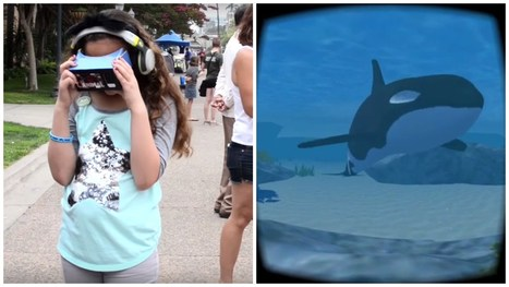 Can Virtual Reality Help Orcas at SeaWorld? - YouTube | Nature Animals humankind | Scoop.it
