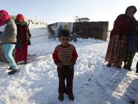 Targeting Syrian refugees in Lebanon  - Intifada Palestine | Syria | Scoop.it
