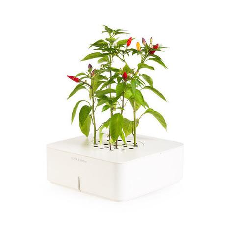 Click & Grow : jardinez avec un SmartPot | Développement, domotique, électronique et geekerie | Scoop.it