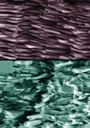 Matériau inspiré de la nacre | Al-Fe-Ti | Scoop.it