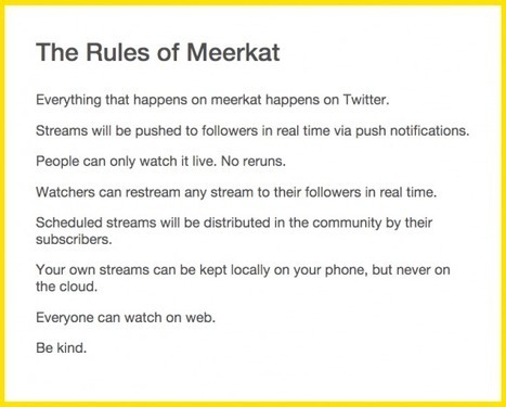 Why Meerkat is the next big marketing thing in travel   Tourism marketing   Scoop.it
