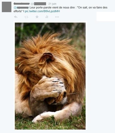 Les twittos tu n'insulteras point ! | Communication territoriale, de crise ou 2.0 | Scoop.it