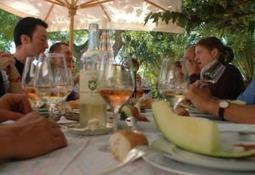 Le rosé réinvente le marketing du vin - reussir vigne | Vin | Scoop.it