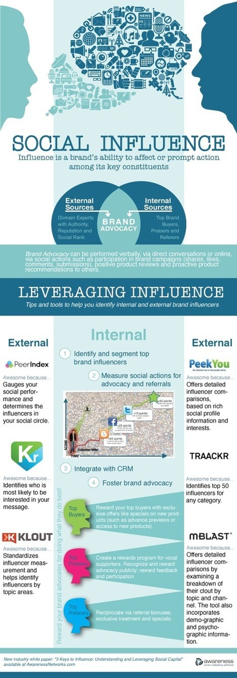 Leveraging Internal and External Social Influence [Infographic] | Time to Learn | Scoop.it