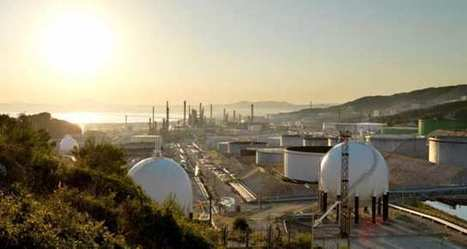 Total anticipe la montée en puissance des biocarburants | Chimie | Scoop.it