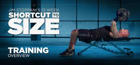 Bodybuilding.com - Jim Stoppani's 12-Week Shortcut To Size - Build Muscle & Gain Strength! | Exercising Effectively | Scoop.it