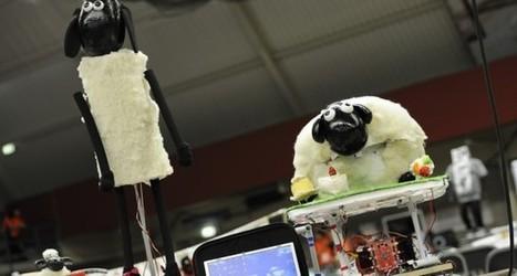 RoboCup 2013 Eindhoven | RoboCup | robotics | Scoop.it